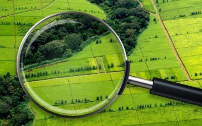 Курсовая работа по земельному праву